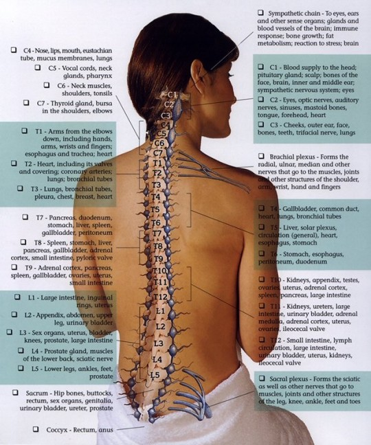 Symptoms of Spinal Subluxations